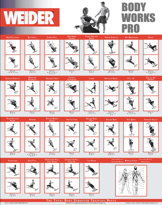 Gym Workout Schedule For Men Pdf Juve Cenitdelacabrera Co