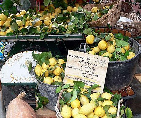 Lemon Festival - Monterosso, Cinque Terre - Liguria. #jellow #riviera # essenzadiriviera.com