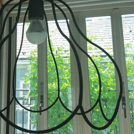 natural green curtain