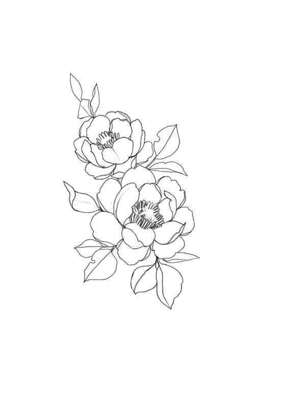 199031209c3650b1cd8813432f7292fd » Aesthetic Flower Drawing