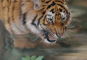Startled – A Tiger Painting... Kat Davies