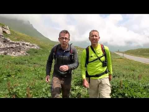 Jouez avec Jamy - Question Marmotte - Haute Maurienne Vanoise