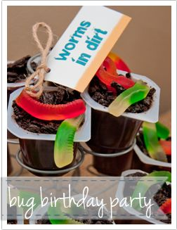 Perfect Birthday Party for Gracen when he gets older & loves bugs!