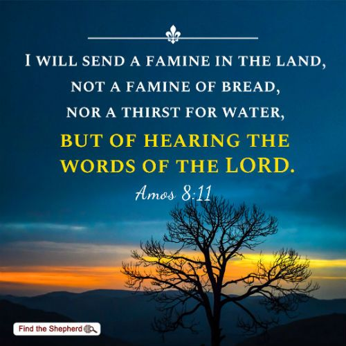 Image result for amos 8:11