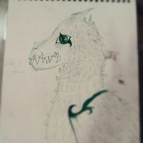 Dragon.... - by Zeba Hassan