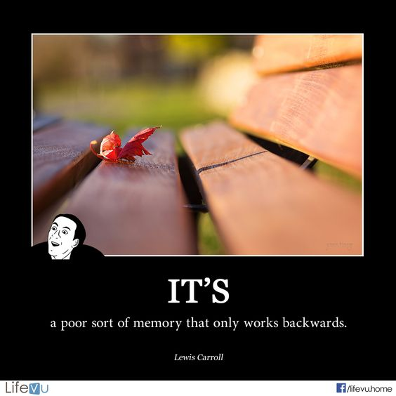 """Picture And Memory Quotes: """"It's A Poor Sort Of Memory That Only Works Backwards"""