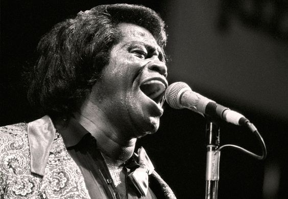 When James Brown died on Christmas Day 2006, he left behind a fortune worth tens, maybe hundreds, of millions of dollars. The problem is, he also left behind fourteen children, sixteen grandchildren, eight mothers of his children, several mistresses, thirty lawyers, a former manager, an aging dancer, a longtime valet, and a sister who's really not a sister but calls herself the Godsister of Soul anyway. All of whom want a piece of his legacy