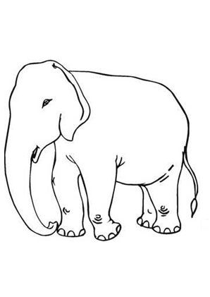 Ausmalbild Grosser Elefant Ausdrucken Ausmalen Ausmalbild Elefant