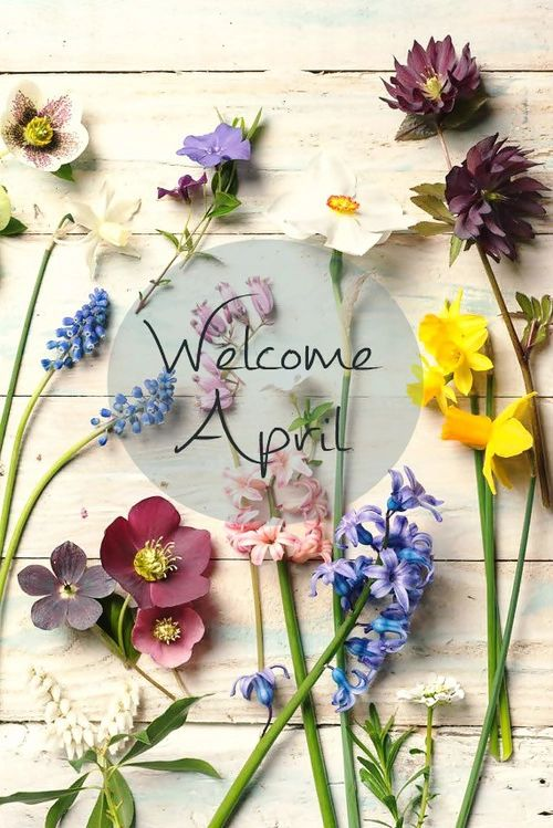 Welcome April!: