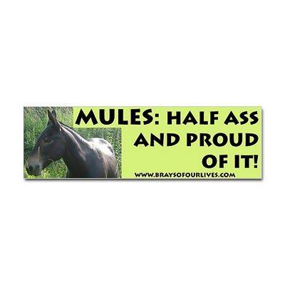 mules = half ass!