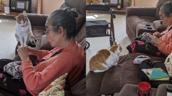 20 φωτογραφίες που μας έκανε να λατρέψουμε τη φιλία μεταξύ των ζώων και των ανθρώπων τους (Μέρος 1ο)