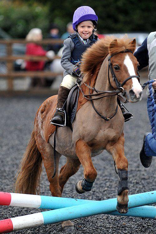 Pony и малко ездач: