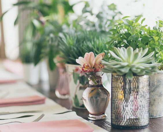 Decor fofo e romântico com pequenos vasos e suculentas.  Foto: Duo Borgatto  Yes Wedding http://yeswedding.uol.com.br/pt/antena-yes/overdose-de-felicidade