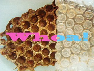 Make chocolate honeycombs using bubble wrap!