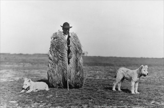 Rudolf Balogh, Shepherd with his Dogs, Hortobagy, c. 1930. Hungarian Museum of Photography. © Hungarian Museum of Photography