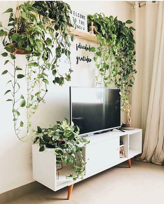 Sala de estar da Debora lá do IG @casa441 com pegada Urban Jungle 💚. Linda demais essas Jiboias, não acharam também? . #diyhomebr #saladeestar #sala #livingroom #living #room