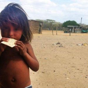 Mueren 51 niños indígenas por desnutrición en Colombia  https://t.co/iXvkclRNfP #siguemeytesigo