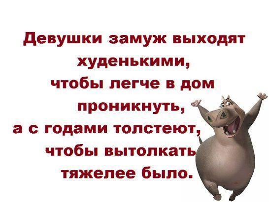 Смешные картинки с надписями до слез для детей с животными 3