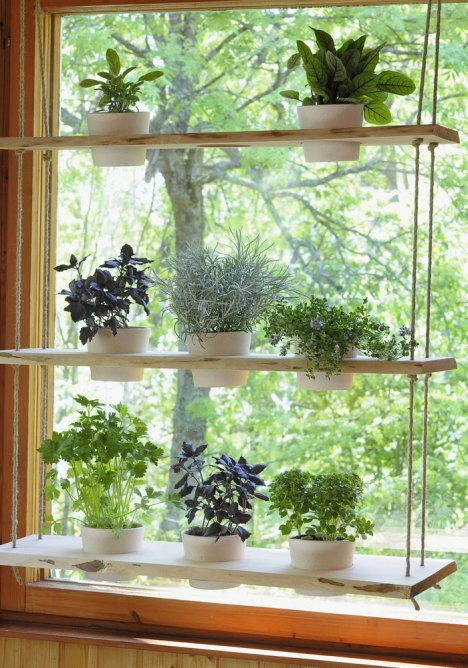 hanging plant holder - perfect for a window and holds lots for plant - would make a great room divider too: