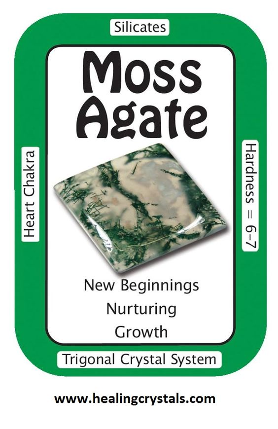 "Crystal Card of the Day: Moss Agate, ""I live in an abundant world."" Moss Agate is associated with nature and agriculture. The gentle, nurturing energy of Moss Agate encourages the user to appreciate and enjoy each moment on Earth, and assists the planet in its healing. Moss Agate is associated with nature spirits and healing Earth energies. Place Moss Agate Cabochons around plants to foster better growth."