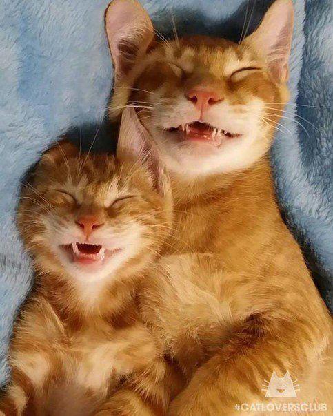 Cuando te gusta sonreír