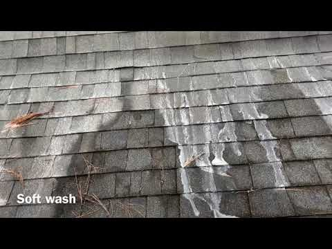 How To Clean Asphalt Shingles On Roof Asphalt Roof Shingles Roof Cleaning Cleaning Gutters