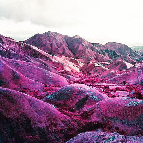 THE HILLS ARE ALIVE • : Richard Mosse Edit. @theroyaldivision