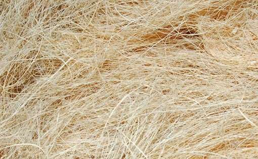 Properties and uses of Natural Fibre Coir, Fiber ...