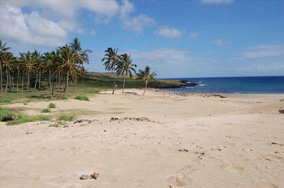 Aguas cristalinas, arenas blancas, palmeras...  son las islas Seychelles? No!!! Es Anakena, Isla de Pascua Chile.