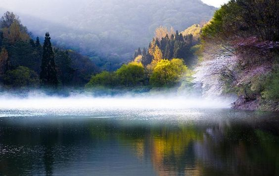 Seryang-Je, (Korea), a reservoir built in 1969 in Hwasun, is another famous spot for both professional and amateur photographers for its ethereal mist and reflections of colorful blossoms and leaves.