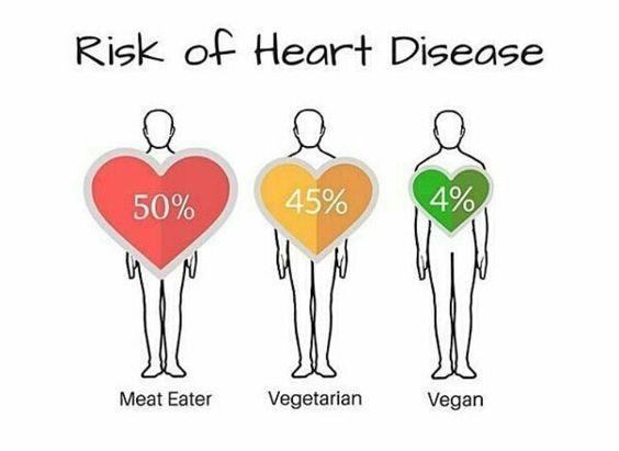 Bilderesultat for vegan vs meat eater