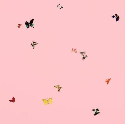 Vsco Teenager Cute Wallpaper Backgrounds Cute Wallpapers Backgrounds Phone Wallpapers