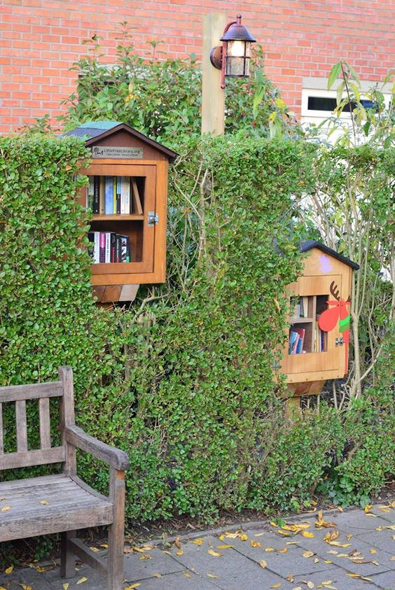 Little Free Library Drongen