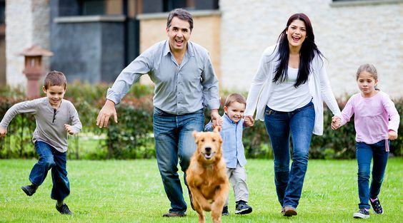 I insure my family now let me insure yours! Call today for your insurance quote 414-877-0777.