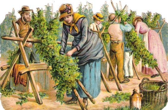 Oblaten Glanzbild scrap die cut chromo Weinlese  15,3cm Wein Ernte Dame Arbeiter: