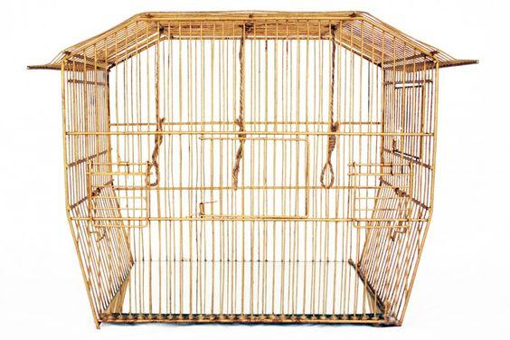 Valentina Torboli Rapetti, Problemi economici insormontabili; gabbia metallica dipinta in acrilico dorato, 44.5x32x24.5