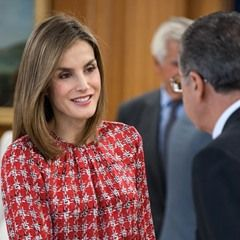 Queen Letizia meets with the Spanish Association Against Cancer in Madrid