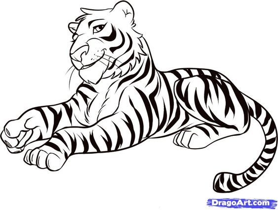 female tiger drawing - Google'da Ara