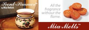 Don't like an open flame?  Mia Melts and Simmer Pots are just for you!  www.hjccandles.scent-team.com
