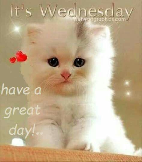 It's Wednesday.  Have a great day!