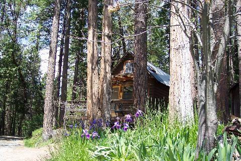 Sunset Inn Yosemite Cabins