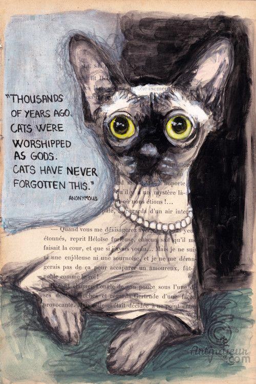 CAT'S MEMORY- VENDU - Peinture,  19x28,5 cm ©2015 par evafialka -                                                                        Impressionnisme, Papier, Animaux, Chats, sphynx, cat, chat, quote, citation, painting, animal portrait