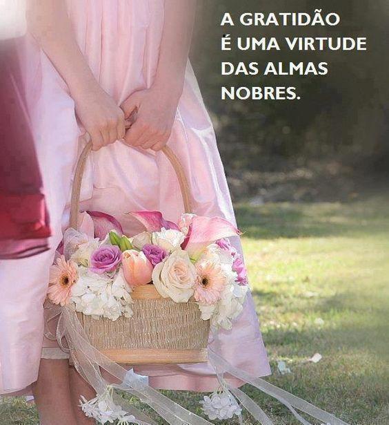 A gratidão é uma virtude das almas nobres.