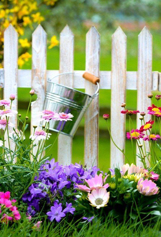 رخيصة Laeacco التصوير الخلفيات حديقة سياج خشبي زهرة غلاية الأخضر العشب خوخه صورة الخلفيات صورة المتصل استوديو الصور يبيع الجودة خلفية م Plants Photography Art