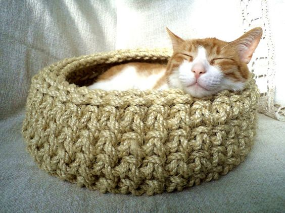 Image result for cat peeking out of a basket