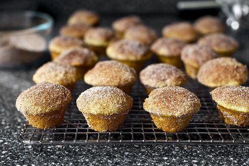 ... cinnamon sugar muffins are amazing - taste just like doughnut holes