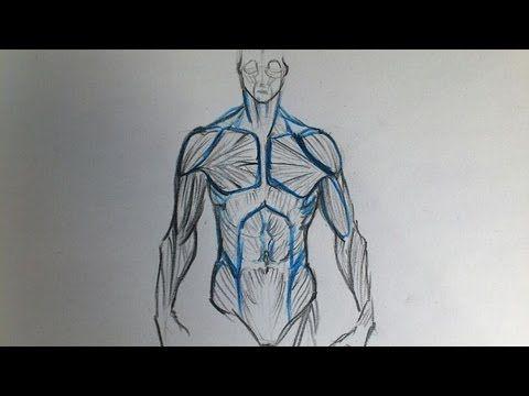 Anatomie Zeichnen Tutorial Part 1: Oberkörper - YouTube