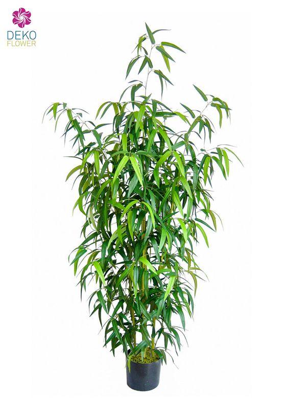 Kunstbambus Kunstbaum Künstlicher Bambus Japanese ca. 210cm für 99.90 € (08.07.2016) versandkostenfrei bei Dekoflower bestellen