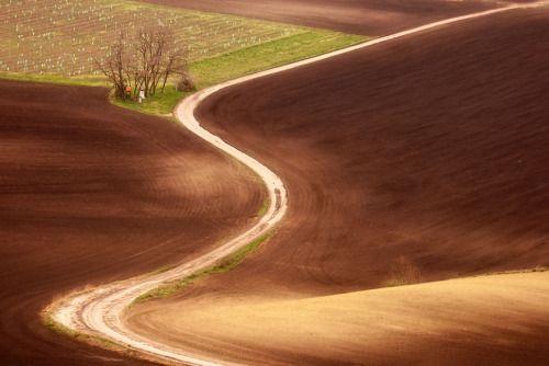 Hypnotizing Beauty Of Moravian Fields In The Czech ARTENSION - The mesmerising beauty of moravian fields photographed by marcin sobas