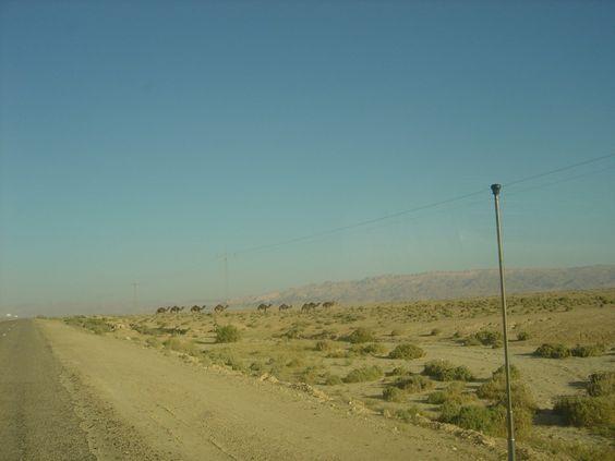 Tunesien Wüste